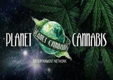 Planet Cannabis - Watch Live